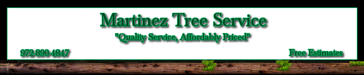 Martinez Tree Service #1 - Tree Services Lawn & Landscaping Carrollton Texas North Dallas